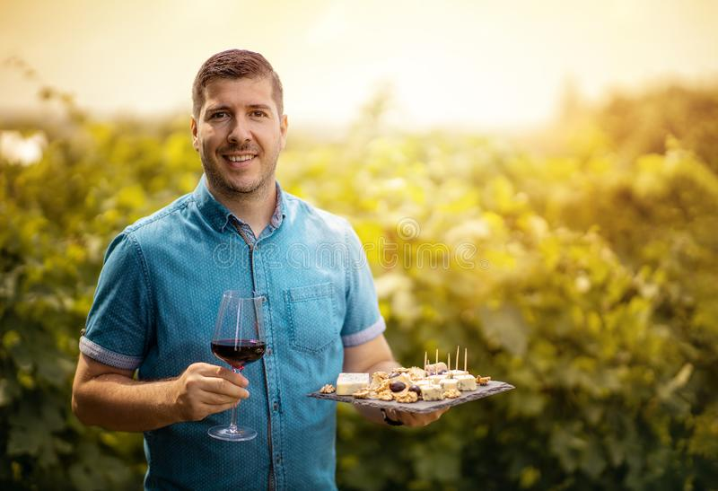 Wine tasting tours in a vineyard stock photography