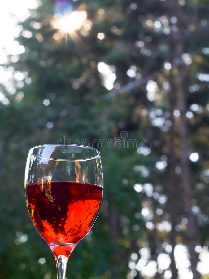 Download Glass Of Red Wine Outdoors With Lens Flare Stock Photo - Image: 185572