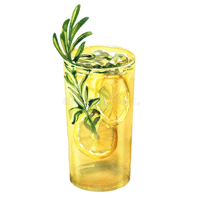 Glass of refreshing cocktail, fresh lemon drink with lemon, rosemary, gin tonic, lemonade, beverage, isolated, hand. Drawn watercolor illustration on white royalty free stock photos