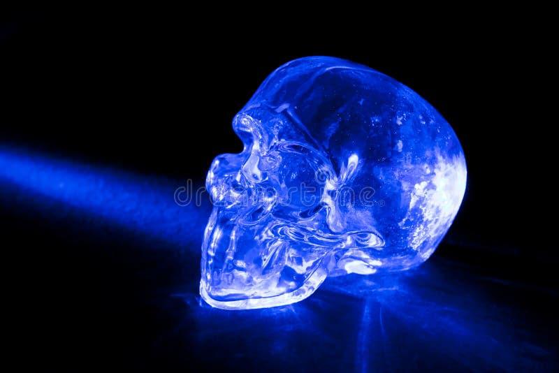 Glass skull stock image