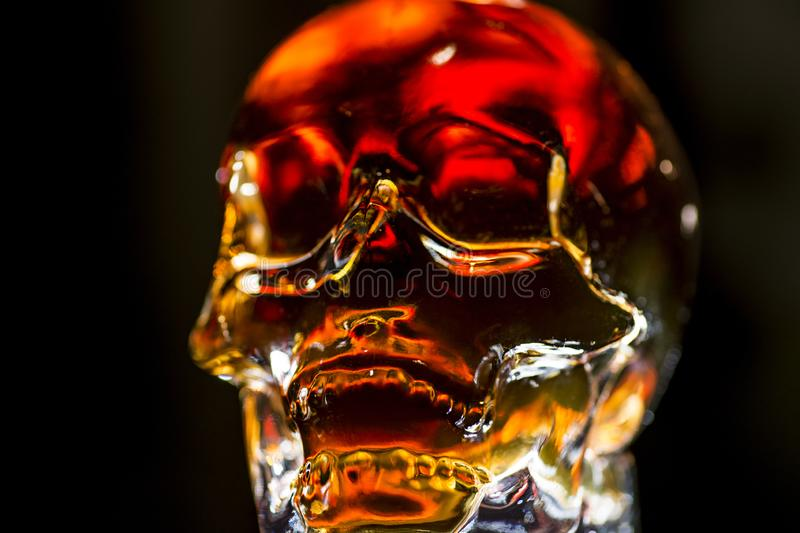 Glass skull with backlight. Glass skull glowing with golden light on a dark background royalty free stock photo