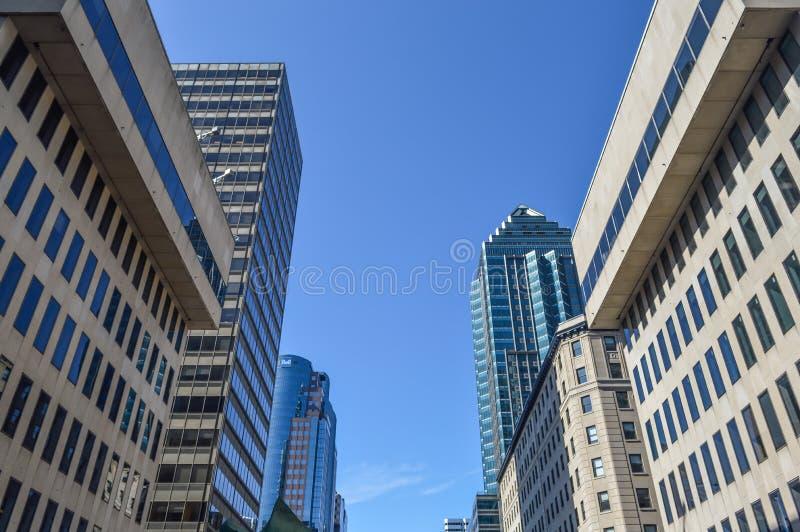 The glass skyscraper stock image