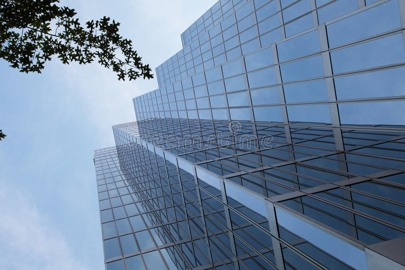 glass skyskrapatree arkivfoto