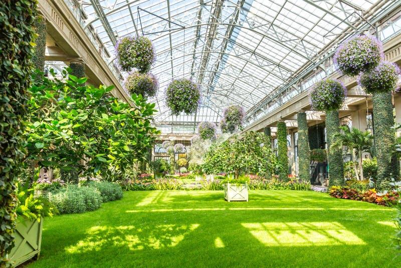 Glass tak av botaniska trädgården royaltyfria foton