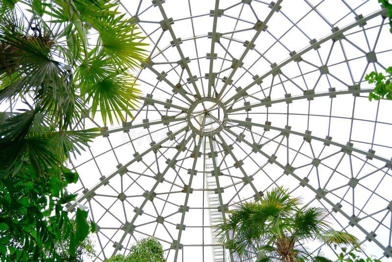 Glass tak för botanisk trädgård arkivbilder