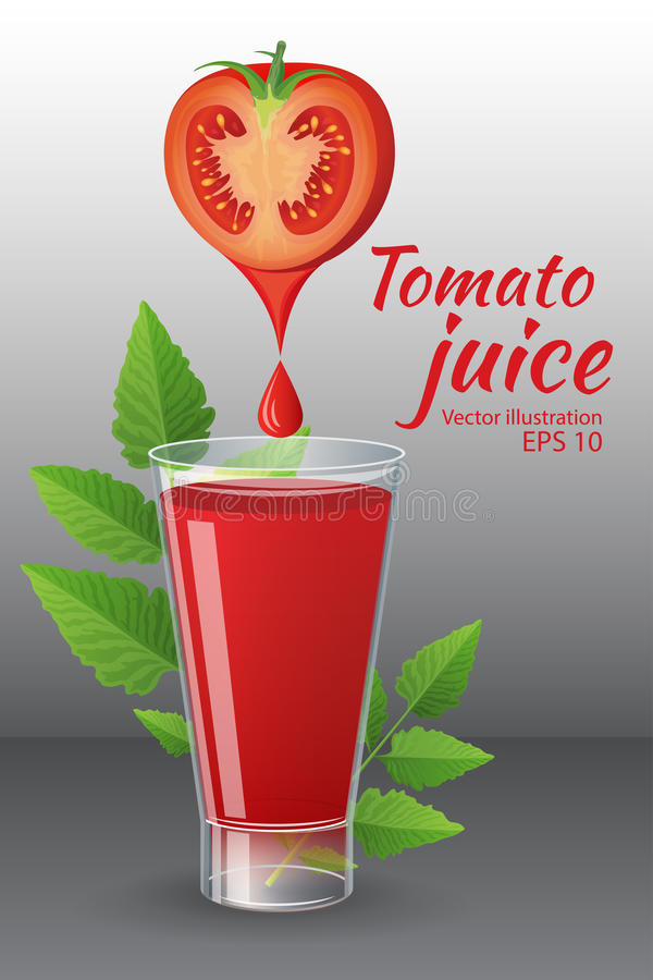 A glass of of tasty fresh tomato juice with red ripe tomatoes, green tomato leafs, cheese, hot chili pepper and parsley vector illustration