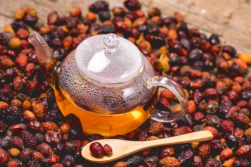 Glass Teapot of Herbal Dog Rose Tea With Dried Rosehips, Types Rosa Canina Hips Hot Drink of Medicinal Plants and Herbs Wooden stock photo