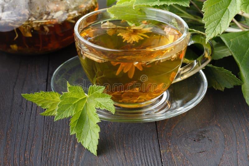 Glass tekanna och kopp med grönt te på den gamla trätabellen med nya örter arkivbild
