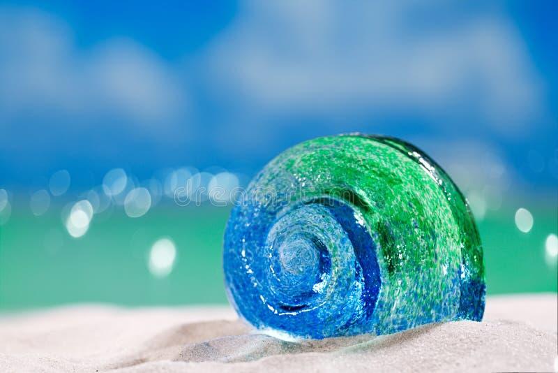 Glass tropical sea shell on white beach sand under the sun lig. Ht, shallow dof stock photo