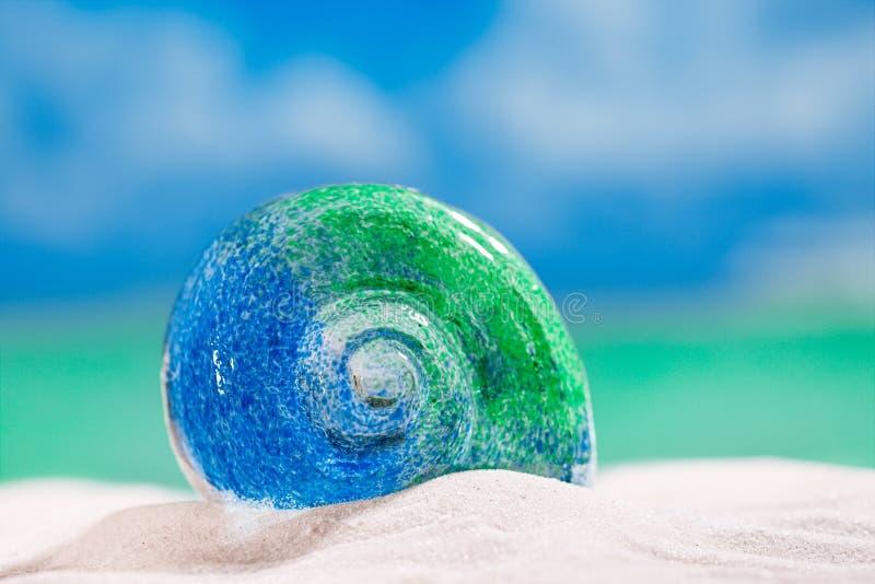 Glass tropical sea shell on white beach sand under the sun lig. Ht, shallow dof stock photography