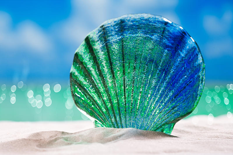 Glass tropical sea shell on white beach sand under the sun lig. Ht, shallow dof royalty free stock photography