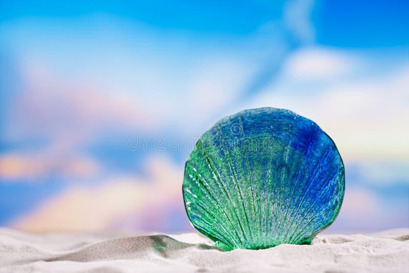 Glass tropical sea shell on white beach sand under the sun lig. Ht, shallow dof stock image