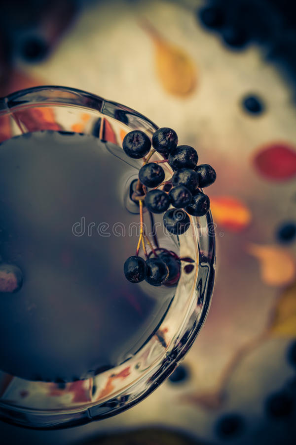 Glass utforma för tappning för tinkturchokeberryhöst arkivfoto