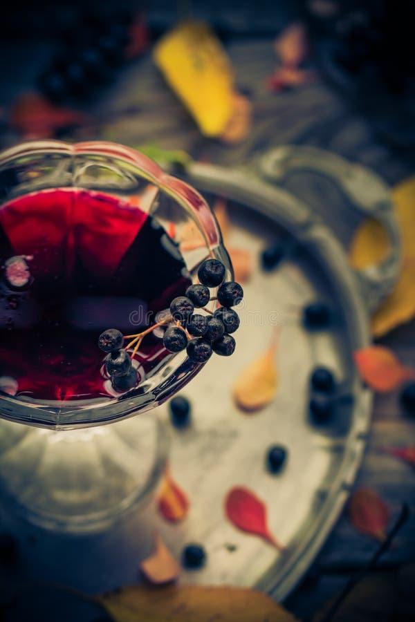 Glass utforma för tappning för tinkturchokeberryhöst arkivbilder