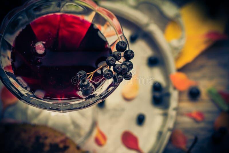 Glass utforma för tappning för tinkturchokeberryhöst royaltyfri bild