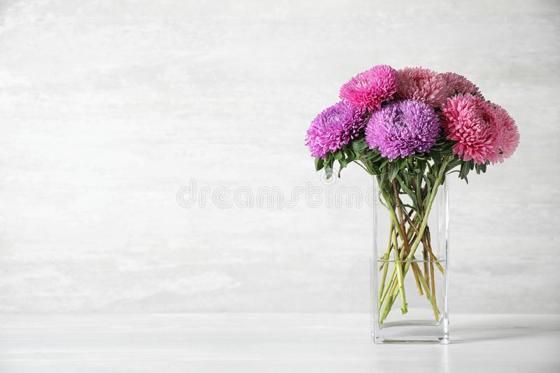Glass vase with beautiful aster flowers on table against light background royalty free stock photos