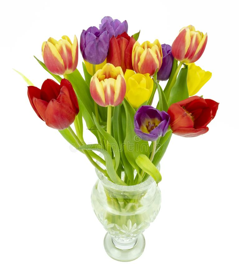 Glass vase and Tulips. View of a glass vase of Tulips on a white background stock photography
