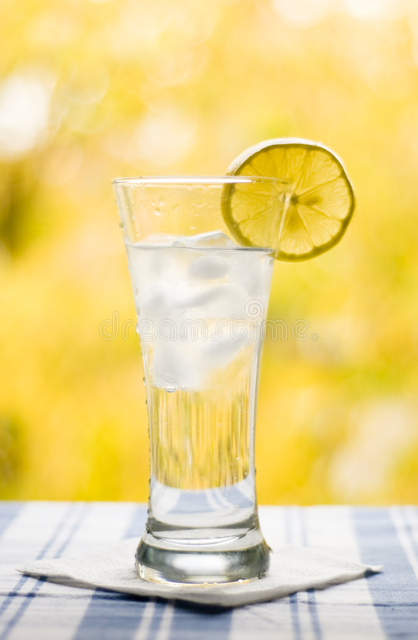 Glass With Water Lemon And Ice Royalty Free Stock Photo