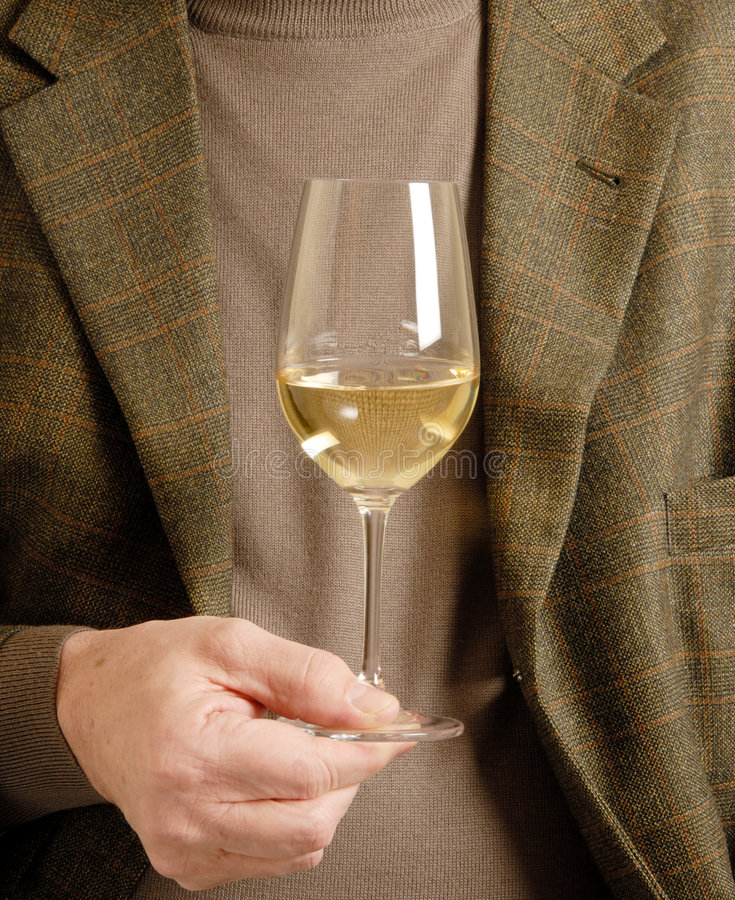 A Glass of White Wine royalty free stock photo