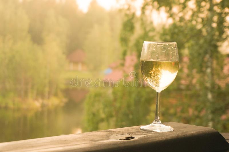 Glass of white wine on a green background of forest stock photos