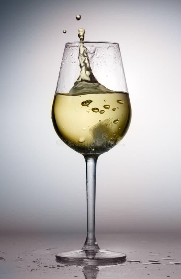 Glass of white wine stock image
