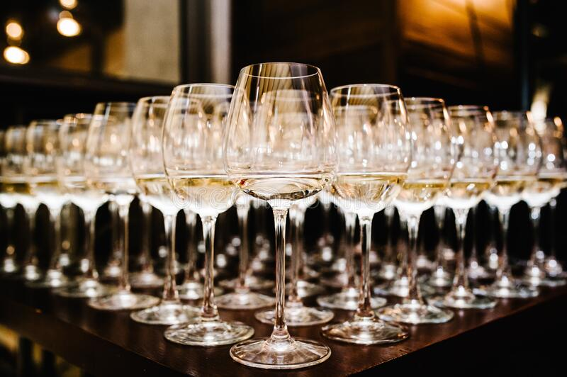 Glass of white wine on a table. Many glass wine in a row on bar counter. Shallow depth of field. Glasses with wine. Filled with royalty free stock images