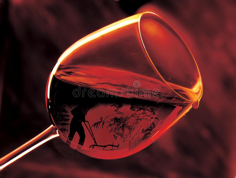 Download Farmer in wine glass stock image. Image of drip, wine - 9846297