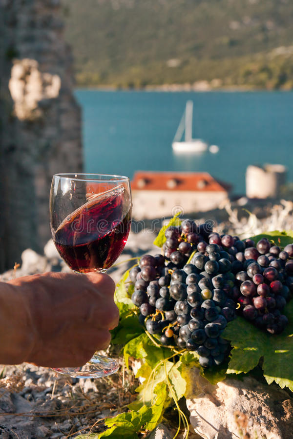A glass of wine in female hand royalty free stock photos