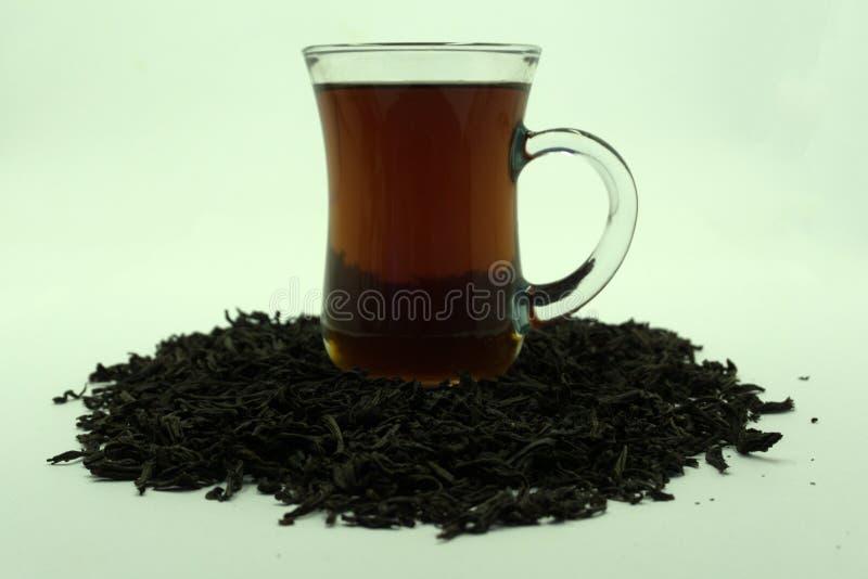 Glasschalen-Tee mit dem tadellosen Blatt, lokalisiert auf weißem Hintergrund stockbilder