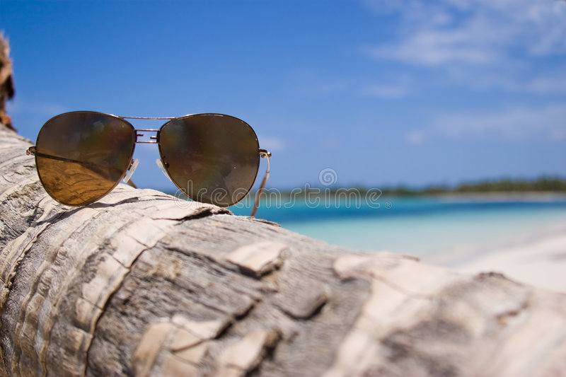 Download Glasses stock image. Image of tropical, palm, beach, caribbean - 5207677