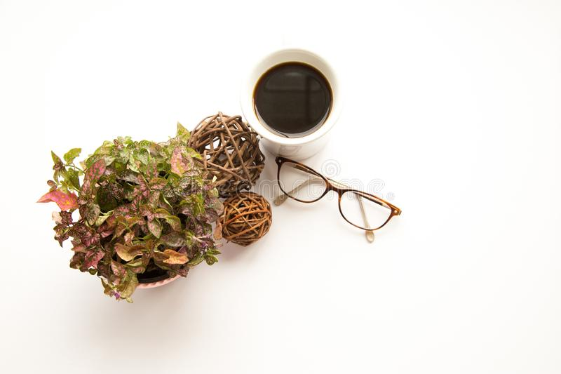 Glasses and floral stock image