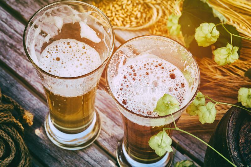 Fresh cold beer glasses in rustic setting royalty free stock image