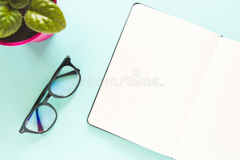 A glasses, an open note with white page, green flower on a pastel blue background. Copy space stock images