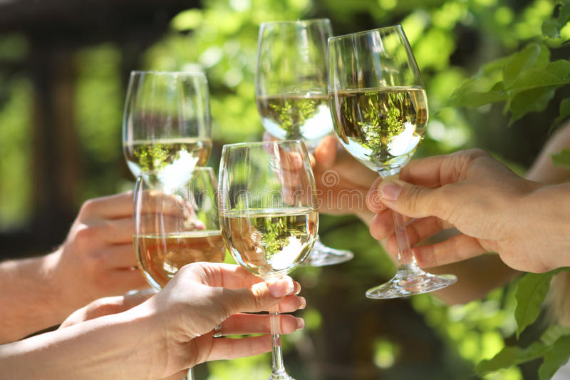 Glasses of white wine making a toast royalty free stock image