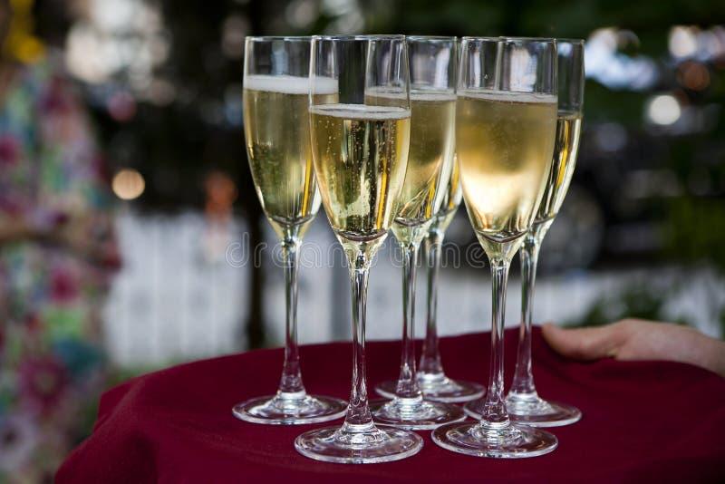 Download Glasses of wine stock image. Image of salver, waistcoat - 15045391