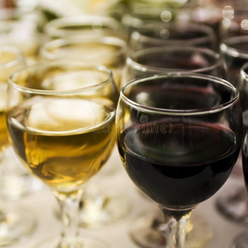Glasses of wine at the bar.  royalty free stock photo