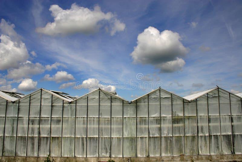 Glasshouse royalty free stock photography
