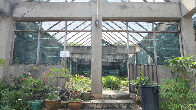 Glasshouse in past stock photos