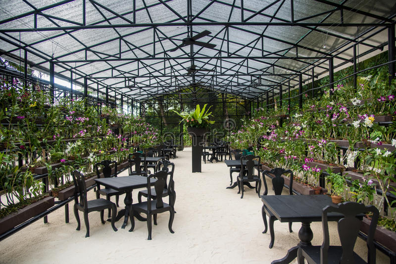 Glasshouse with tables and chairs. Big glasshouse with tables and chairs stock images