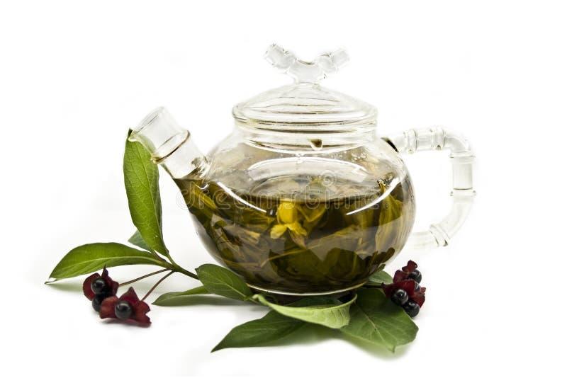 Glasteekanne mit grünem Tee und Teeblättern lizenzfreie stockfotos
