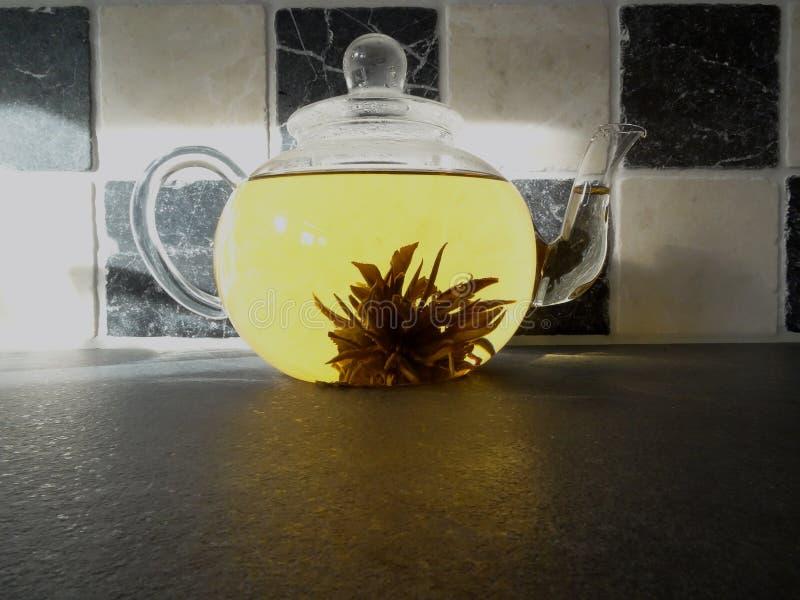 Glasteetopf des gesunden Jasmins des grünen Tees mit Teeblumennachmittagstee am Küchenhintergrund stockbild