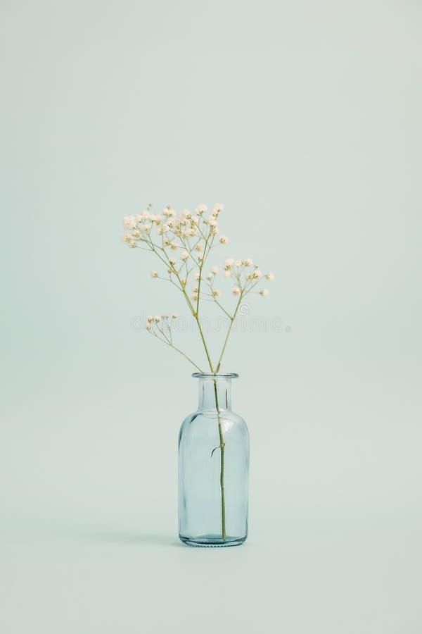 Glasvaas met een klein boeket stock fotografie