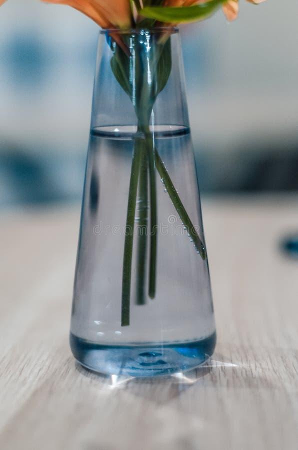 Glasvase mit Wasser und Blumen lizenzfreies stockfoto