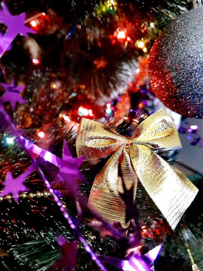 Glat cristmasfoto royaltyfria bilder