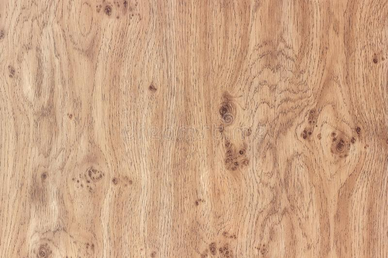 Glatte Holzoberfläche lackiert Natürliches hölzernes Muster lizenzfreie stockfotografie
