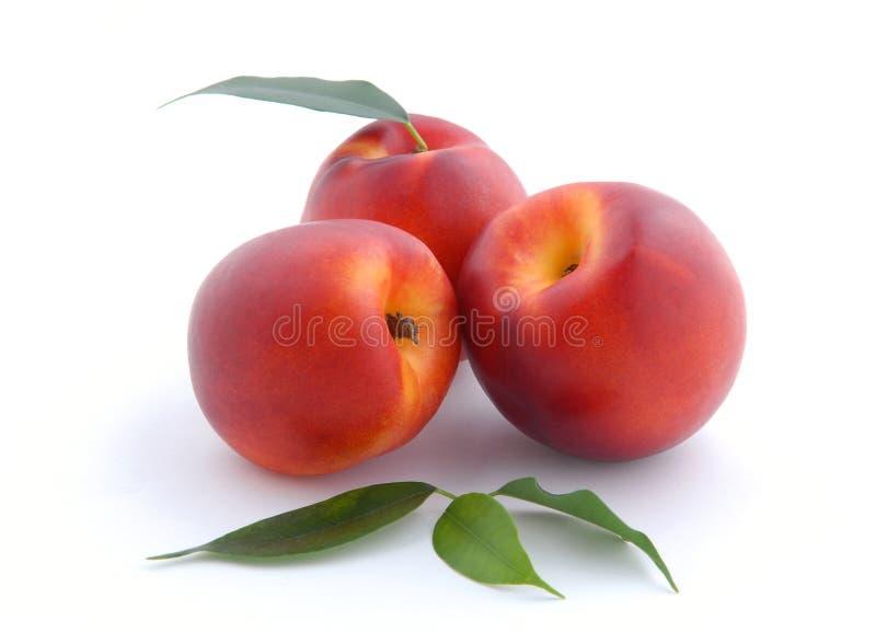 Glatter Pfirsich mit Blättern stockbilder