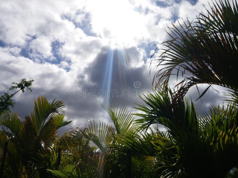 Glauben Sie der karibischen Hitze lizenzfreie stockfotografie
