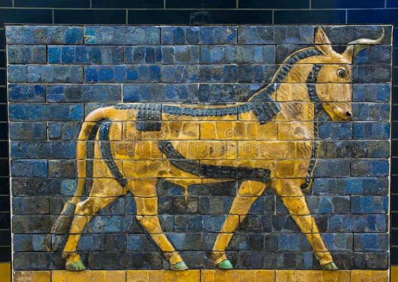 Glazed brick bull from the procession street, Babylon. A Neo-Babylonian 604-562 BC glazed brick Auroch frieze from procession street in Babylon. It is located in stock image