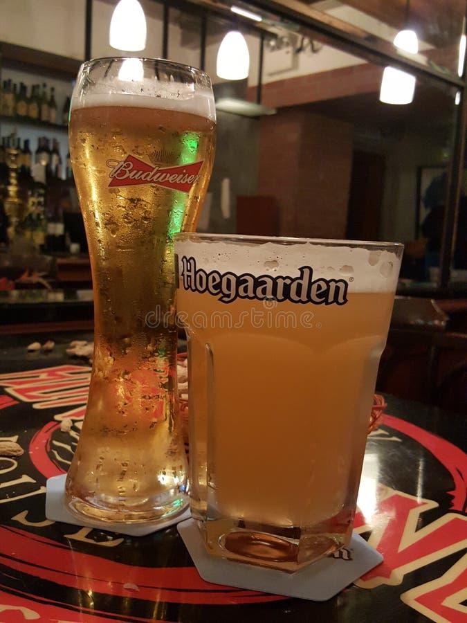 Glazen bier stock afbeelding