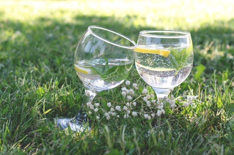 Glazen met het verfrissen van water, citroen en munt op groen gras stock afbeeldingen